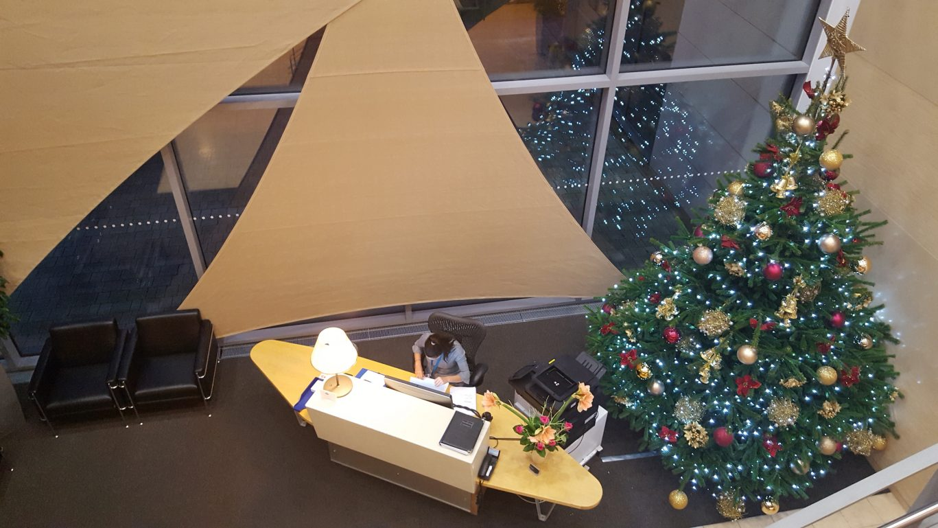 Clinic foyer with christmas tree